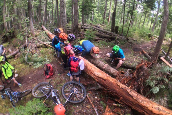 Kids Camp stops to cut out a fallen tree